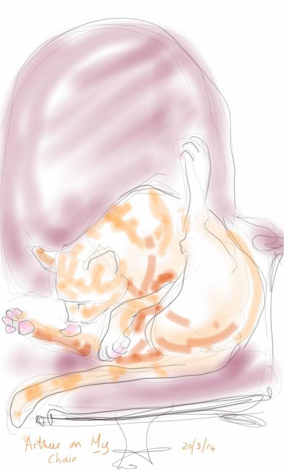 Arthur Cat washing in my chair