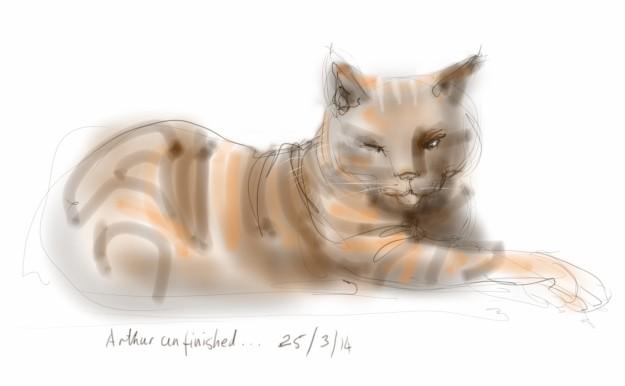 Arthur Cat sitting briefly