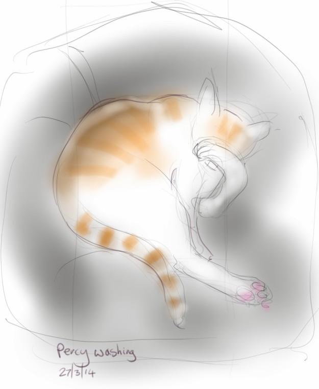 another long cat leg