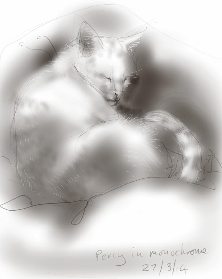 Percy Cat in Monochrome
