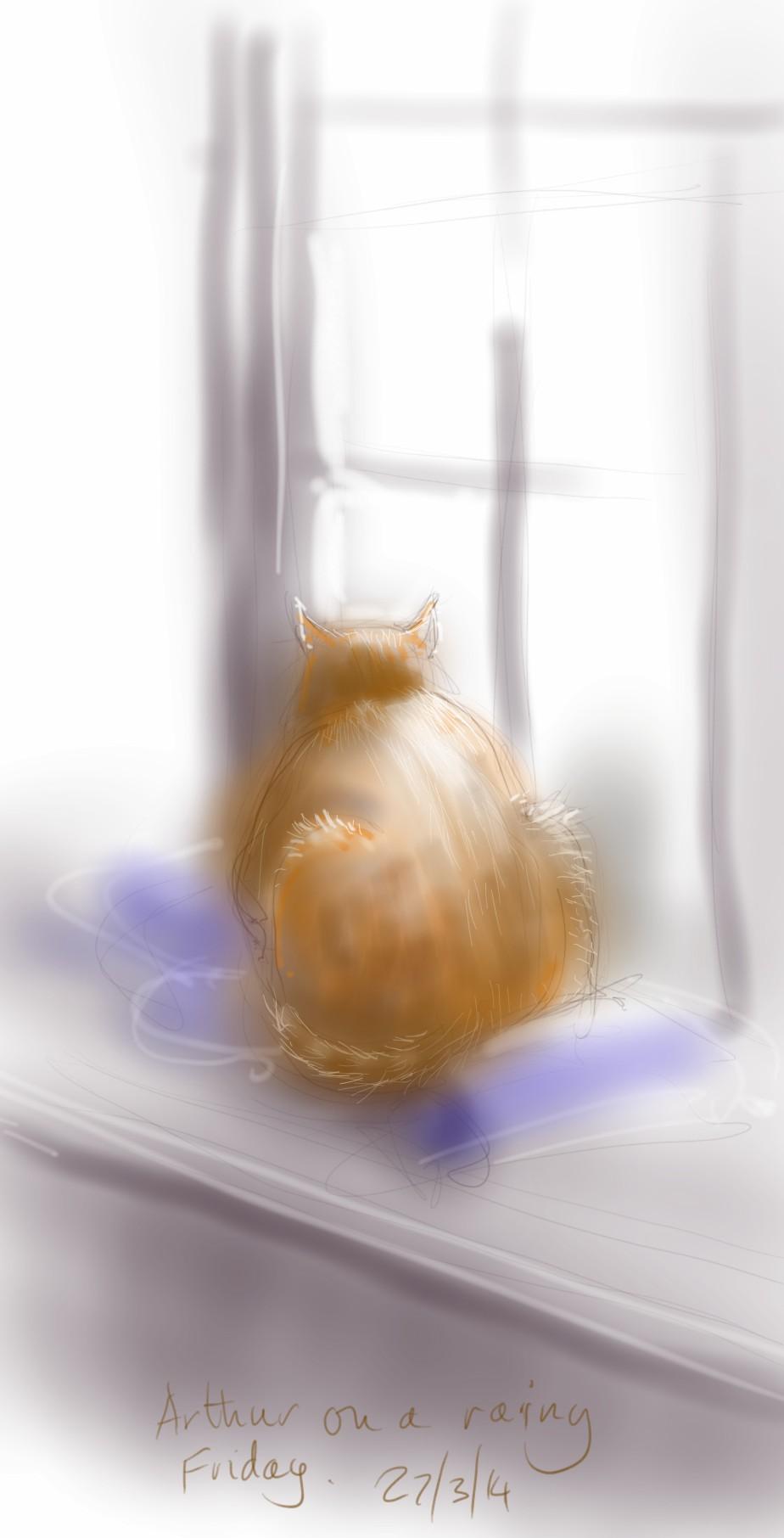 Arthur Cat on the windowsill