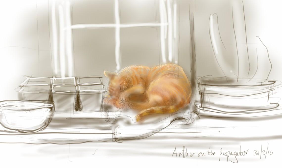 Arthur Cat on the propagator