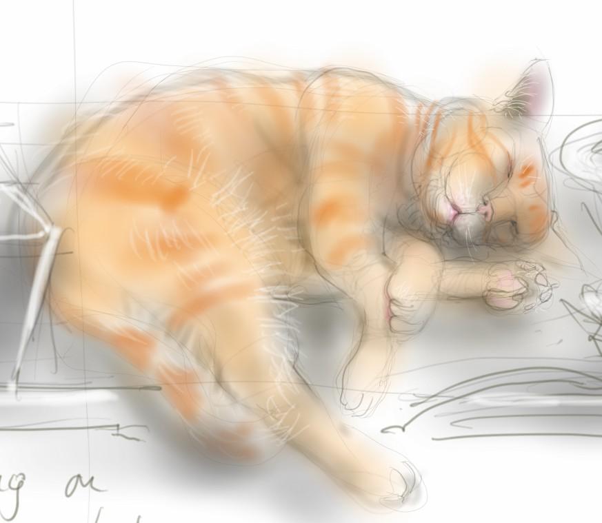 Arthur Cat