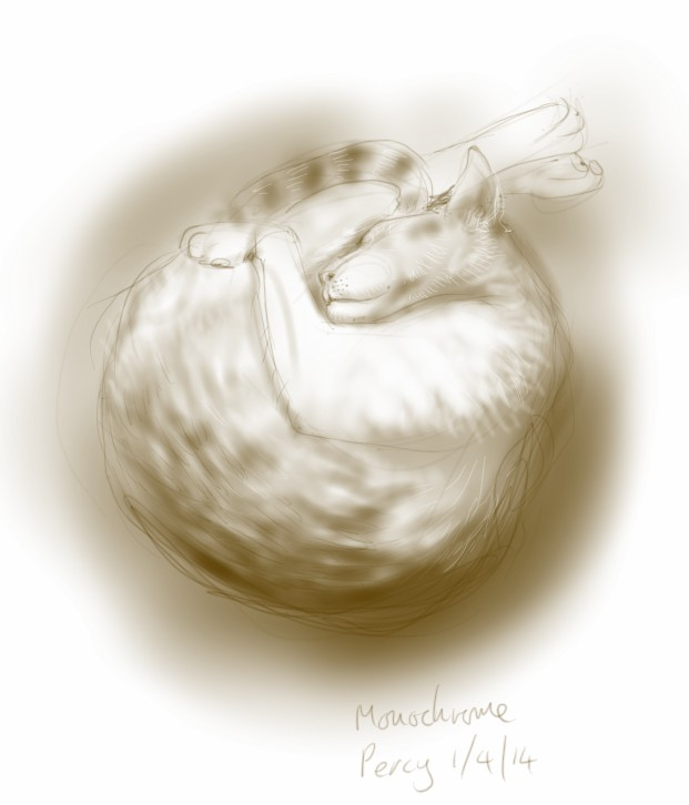 Monochrome Percy Cat