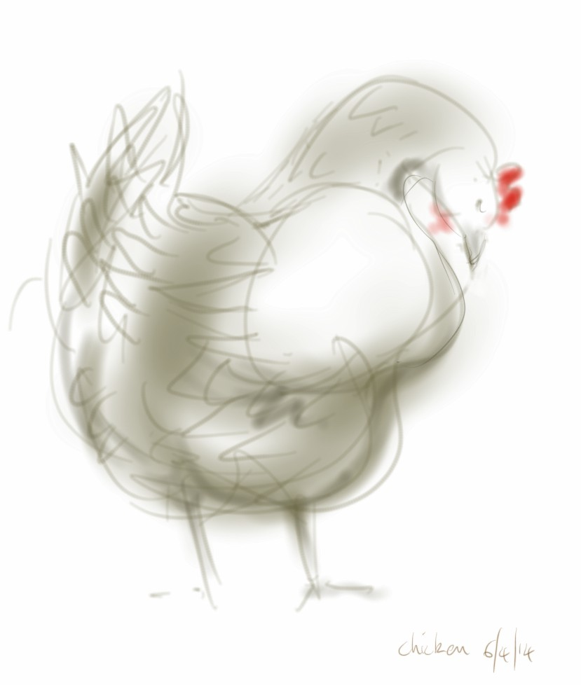 Unfinished chicken