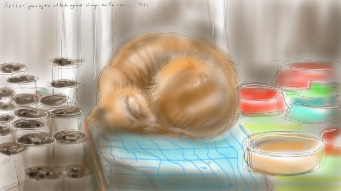 Arthur Cat on guard duty