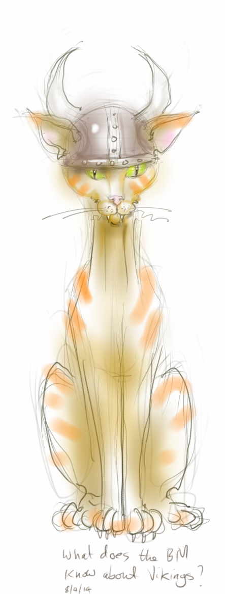 viking cat sketch