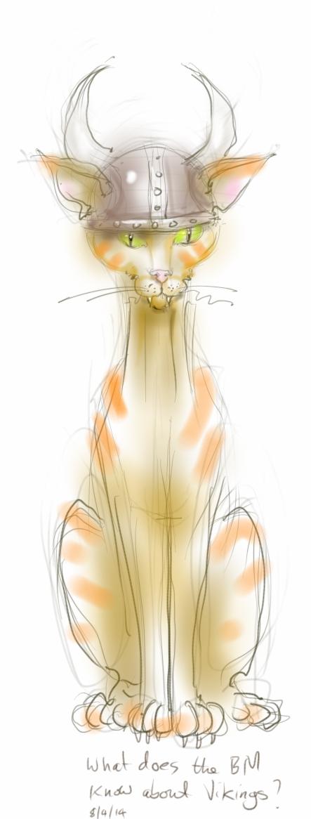 viking cat - drawing