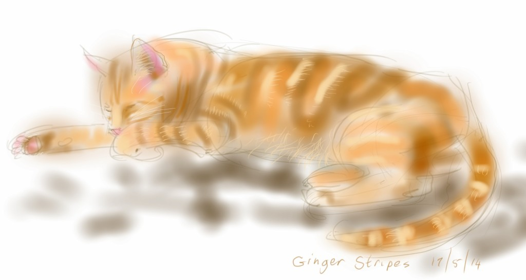 Ginger Stripes