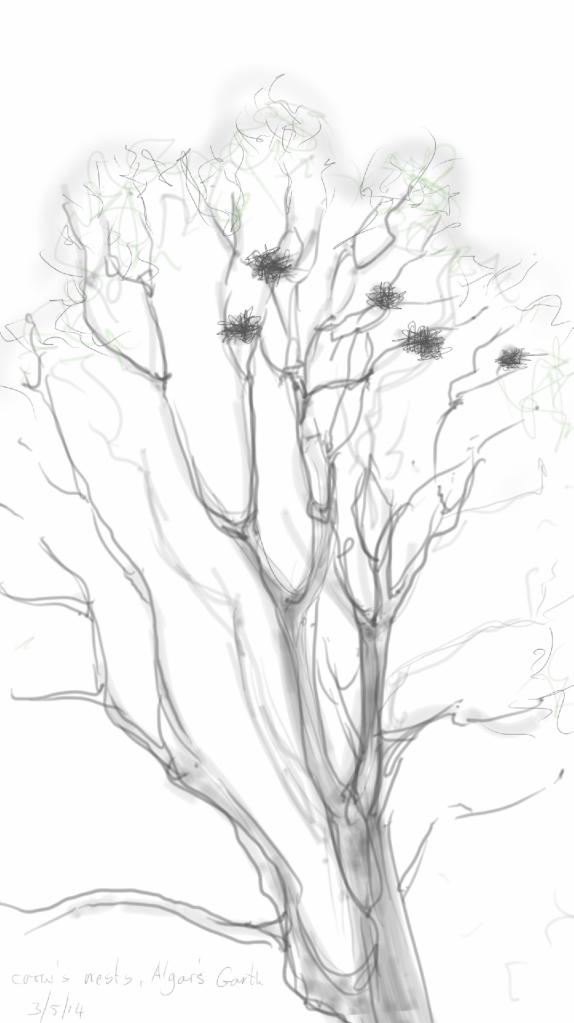 Sketch3618532