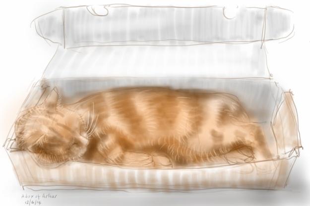 Arthur Cat in a box