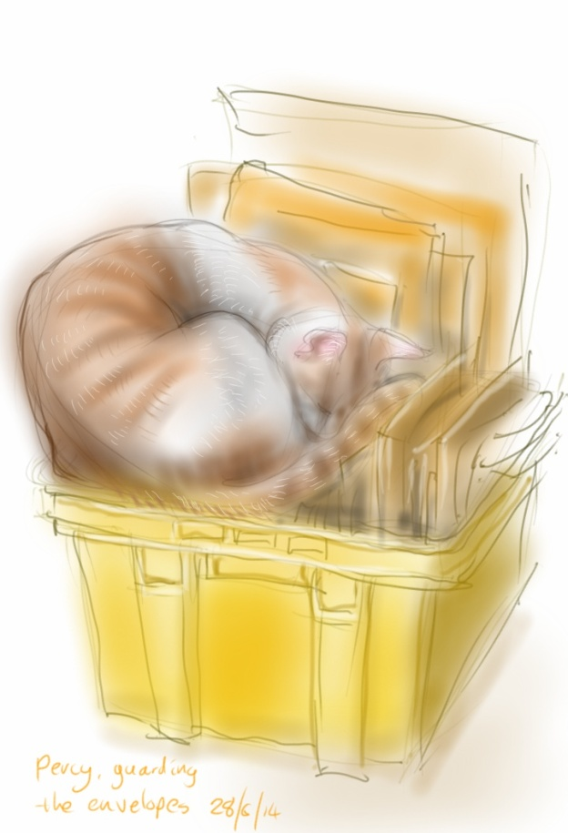 Percy in a yellow box