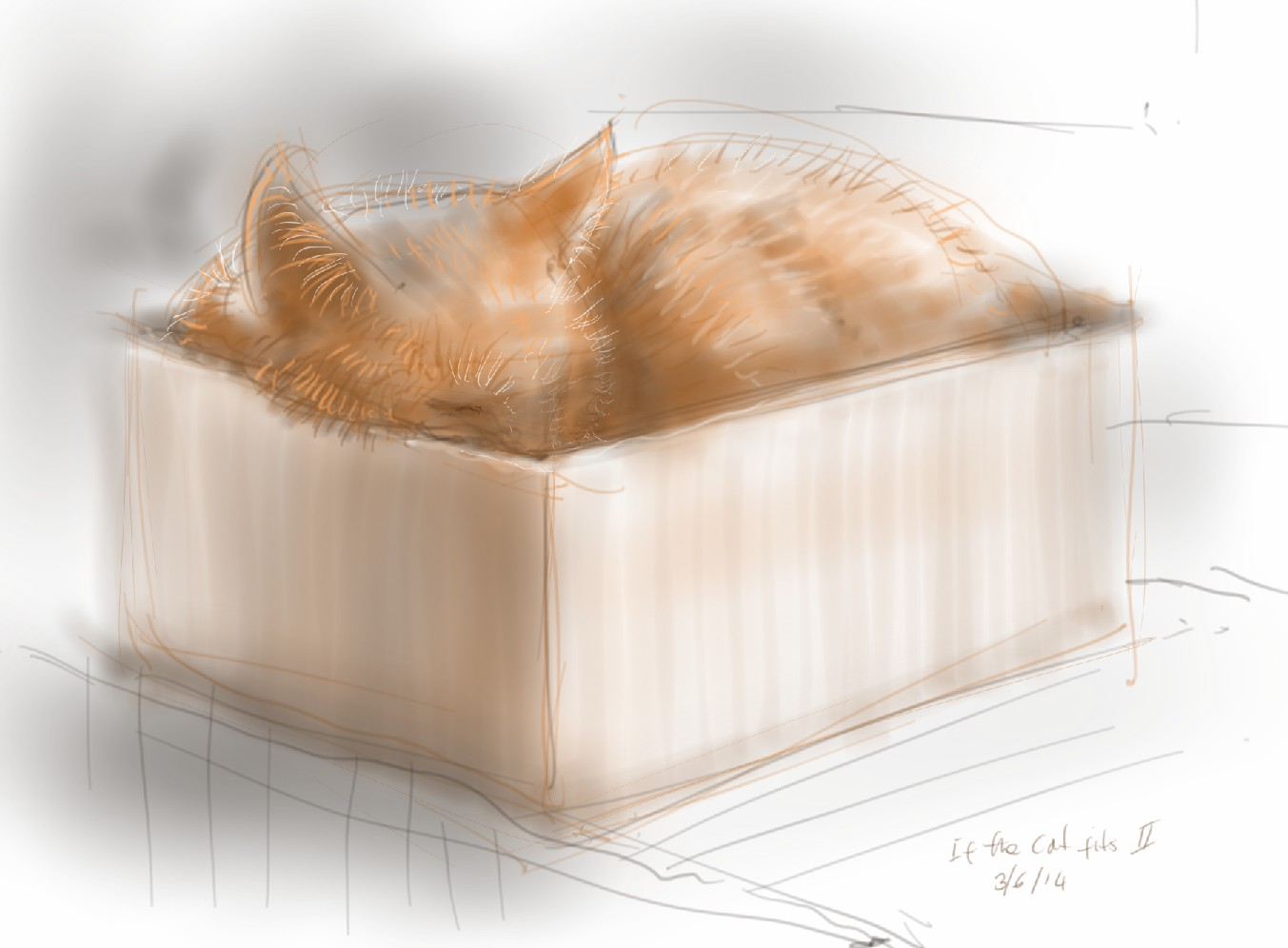 If the cat fits 2