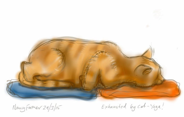 Exhausted by Cat-yoga