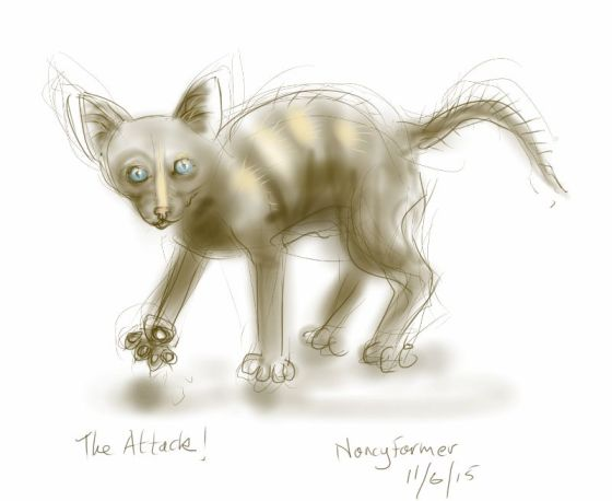 Attack-Kitten