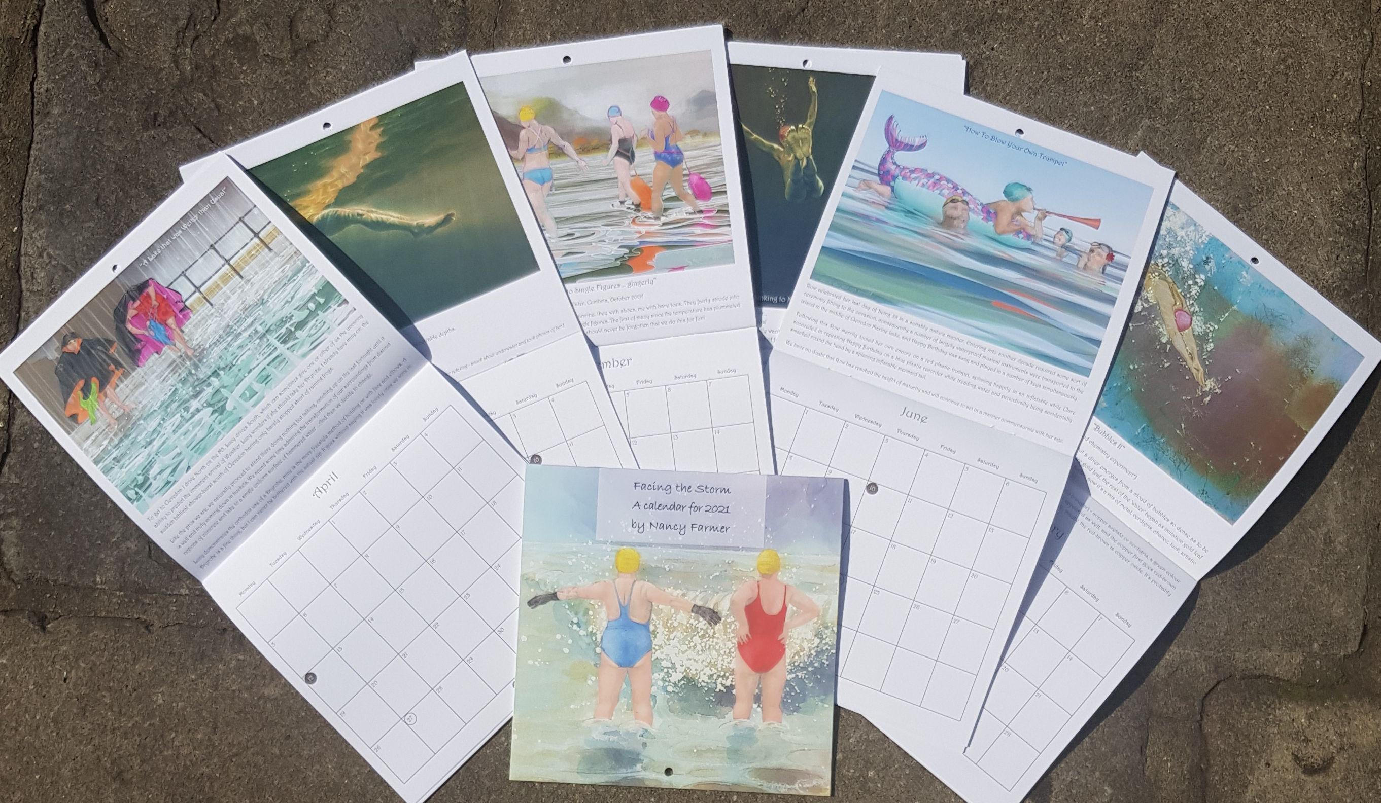 """Facing the Storm"" - a 2021 Calendar by Nancy Farmer"